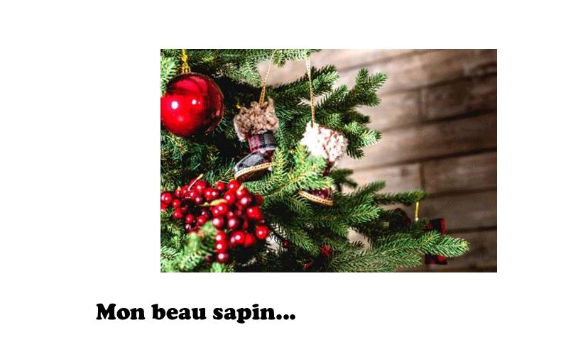 Sapin Noel Place Du Centre